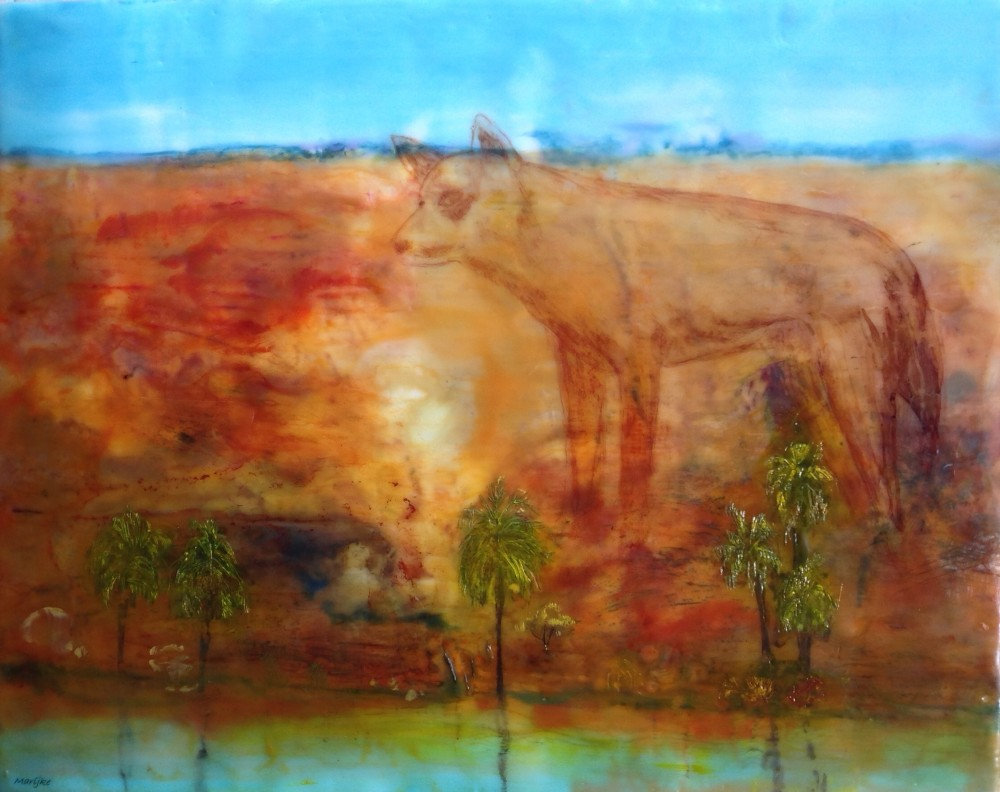 Palm Valley NT by Marijke Gilchrist