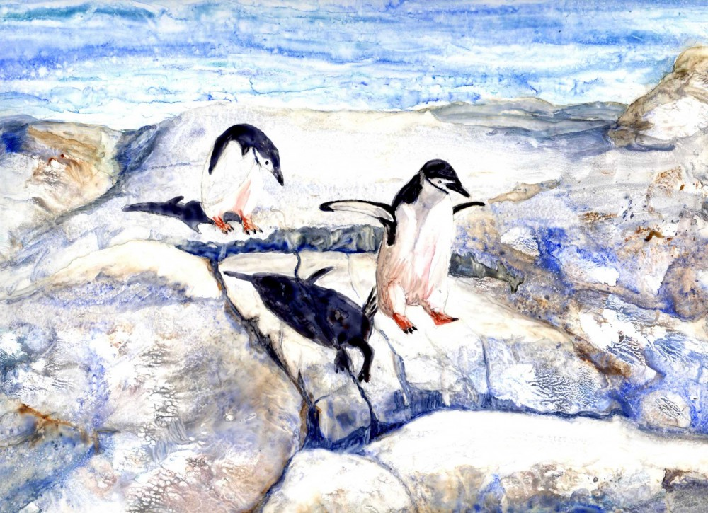 Follow me - Chinstrap penquins by Marijke Gilchrist