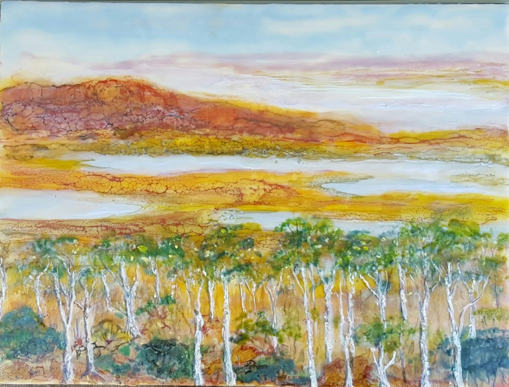 Start of the wet Kimberley area by Marijke Gilchrist
